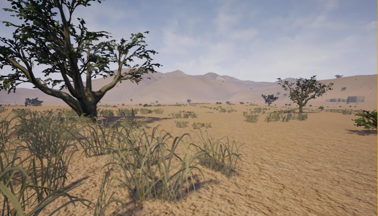 Sahara Plains von LMR Sahara